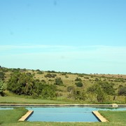 Leeuwenbosch Country House Pool View