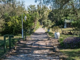 Leeuwenbosch Country House Drive Way