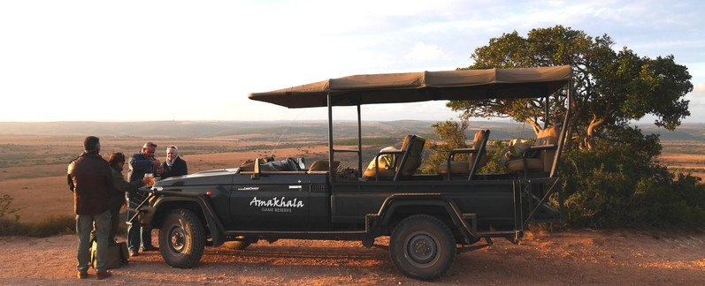Amakhala Game Reserve Leeuwenbosch Day Safari