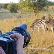 Amakhala Game Lodge Leeuwenbosch Country House Camera Pod