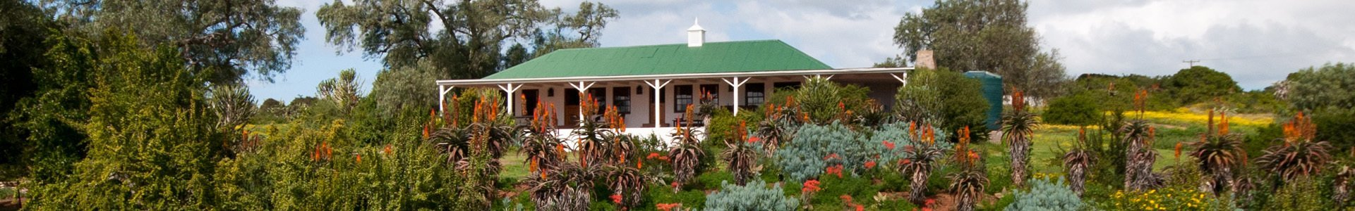 Amakhala Game Lodge Leeuwenbosch Country House Main Lodge Garden